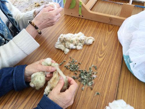 綿の種取り