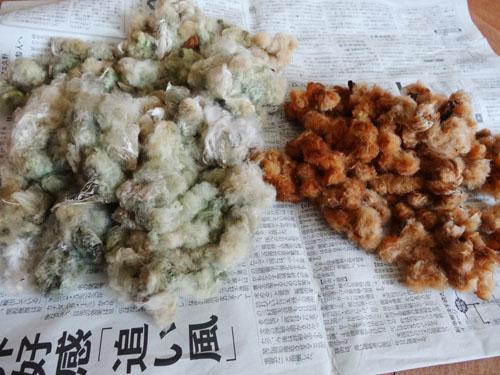茶綿と緑綿