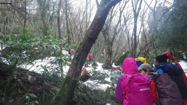 鯛の巣山登山1