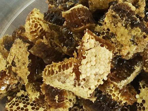 日本蜜蜂ハチミツ